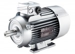 Electric motor 1LE1002-0CB22-2AA4